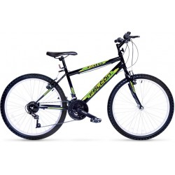 24 Jant Bay Bayan Bisiklet Falcon Ricardo Sport 21 Vites Şehir