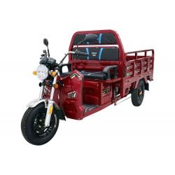 Elektrikli Motosiklet Kral Truva 700 Yük Taşıma Kasalı